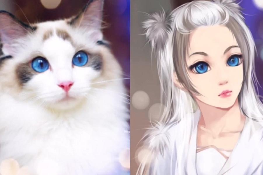 Если бы кошки стали девушками