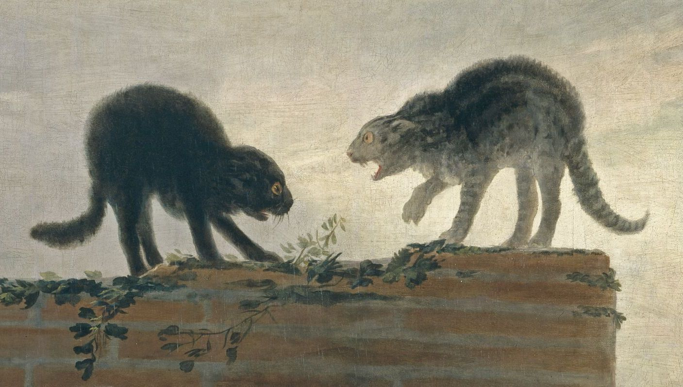 Goya+-+Combat+de+chats+(1786).jpg