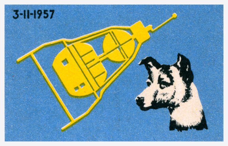 space-dog-768x491.jpg