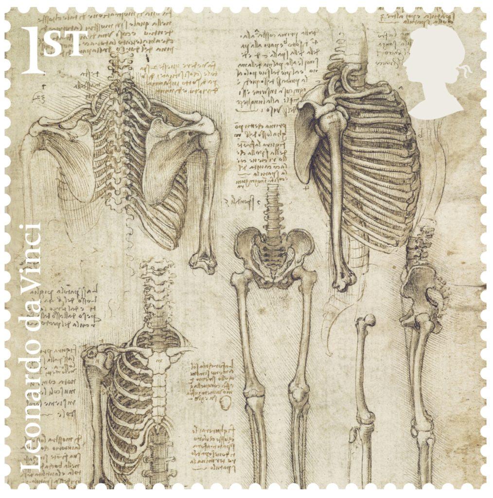 Leonardo-The-Skeleton-stamp-400-1014x1024.jpg