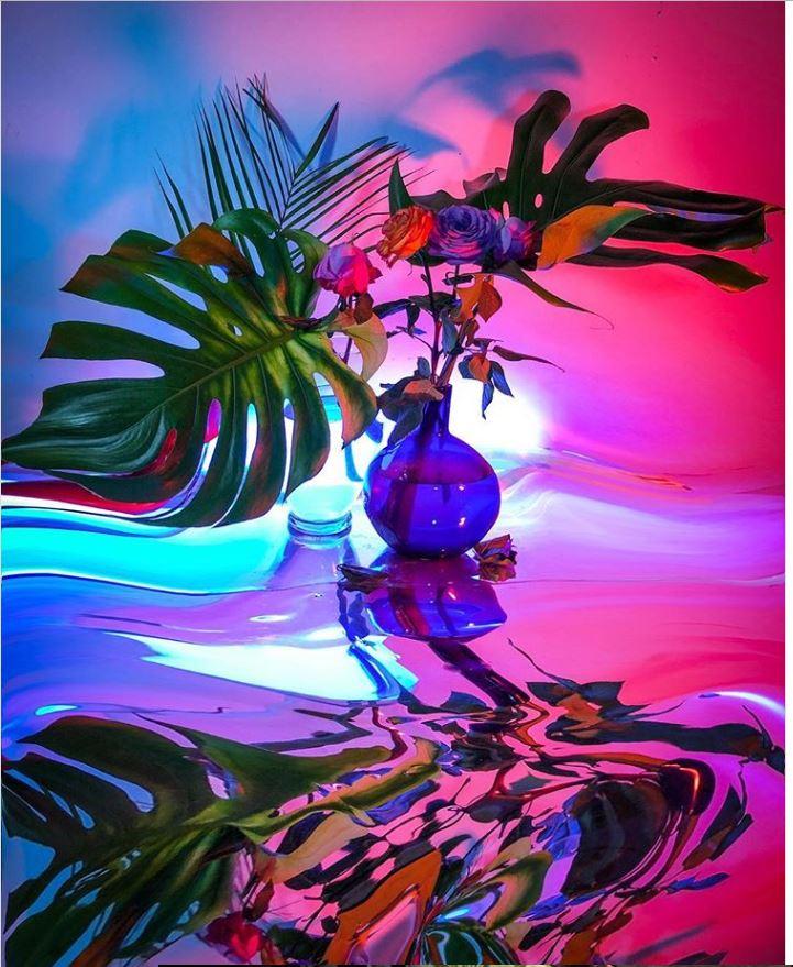 Сигне Пирс. Хаотичная красота реальности (3).JPG