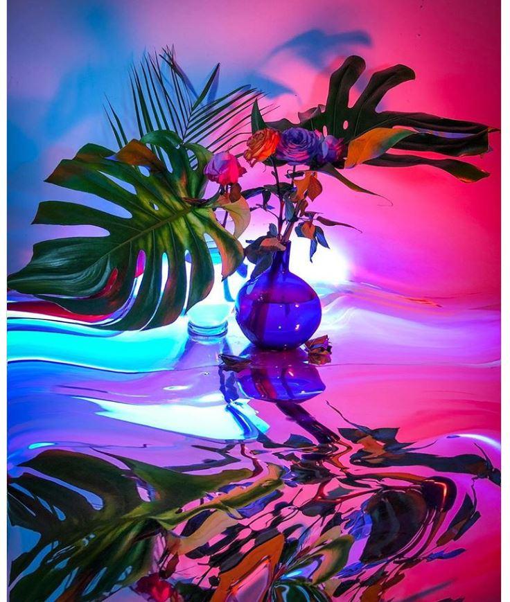 Сигне Пирс. Хаотичная красота реальности (10).JPG