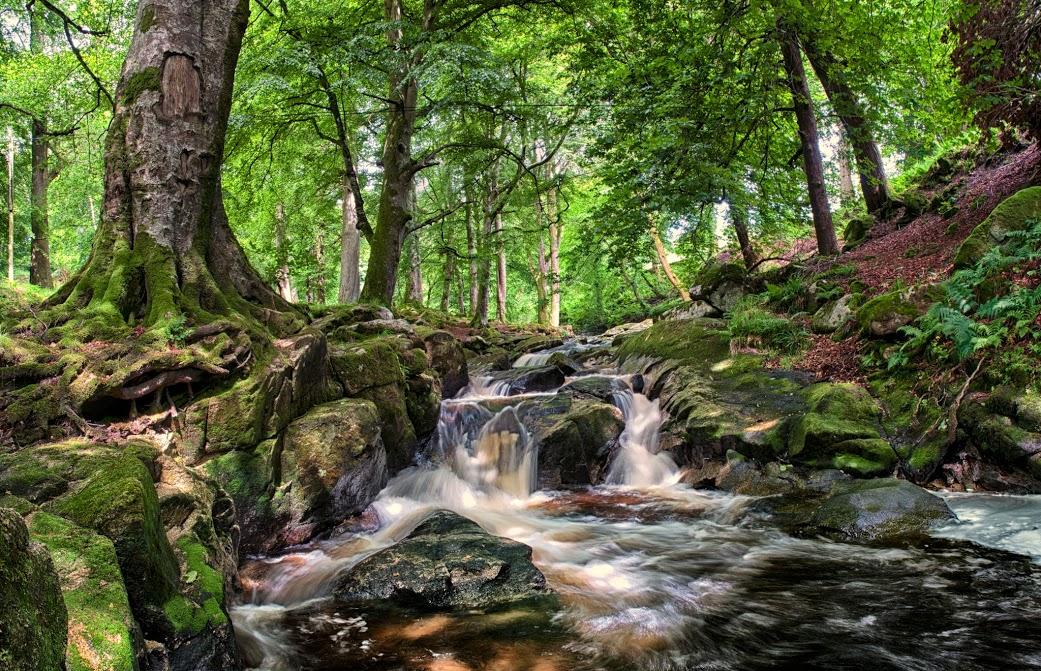 01 CLoghleagh Falls 270612