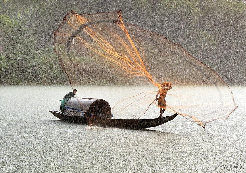 Fish-catch-under-rain