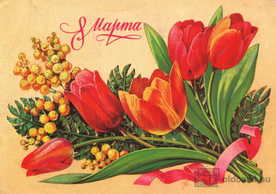 card_05037_2011.jpg