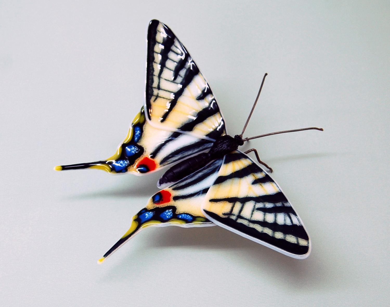 Scarce-Swallowtail-1.jpg