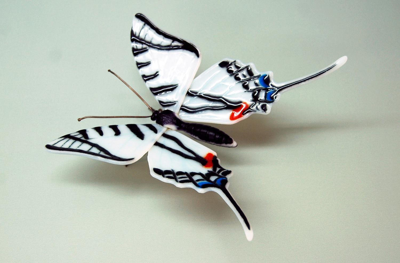 Zebra-swallowtail-1.jpg