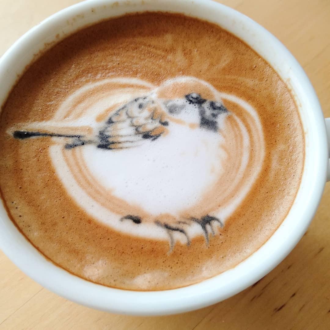 coffee-bird-1 (1).jpg