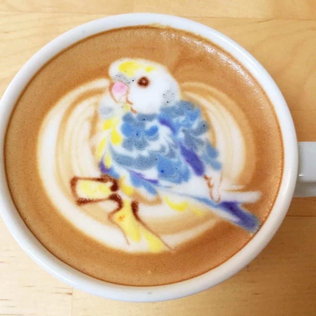 coffee-bird-2.jpg