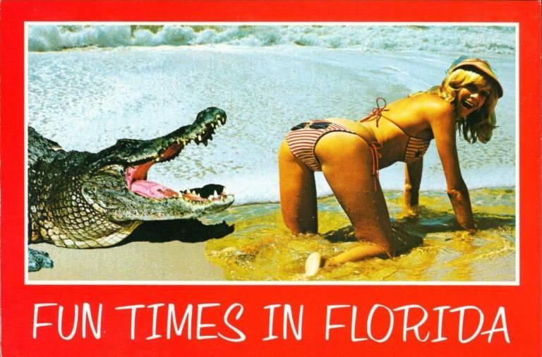 Florida-saucy-768x506.jpg