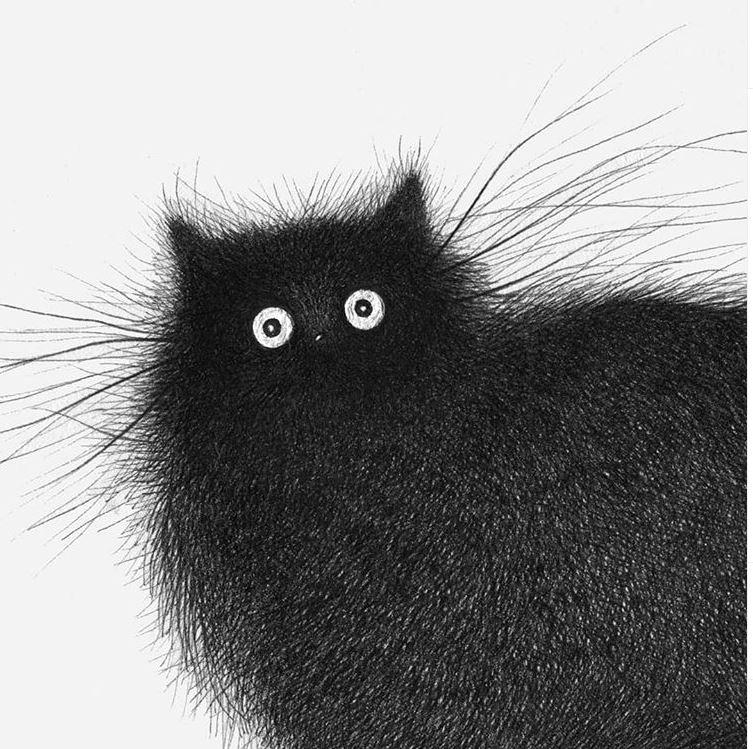 Иллюстратор Луис Коэльо  (1).JPG