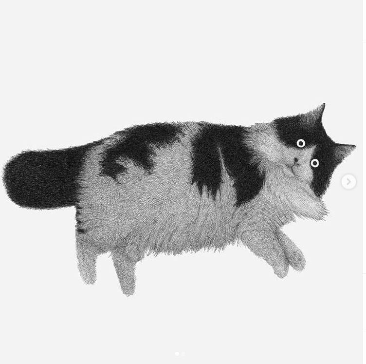 Иллюстратор Луис Коэльо  (2).JPG
