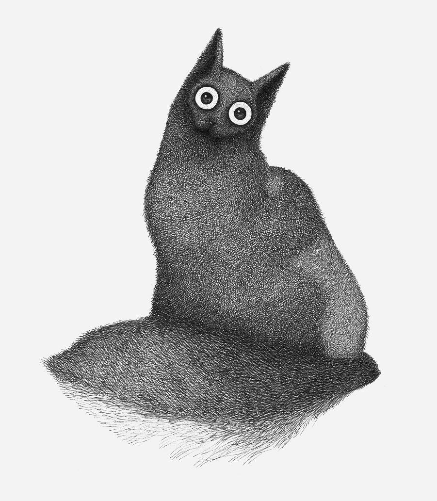 Иллюстратор Луис Коэльо  (5).jpg