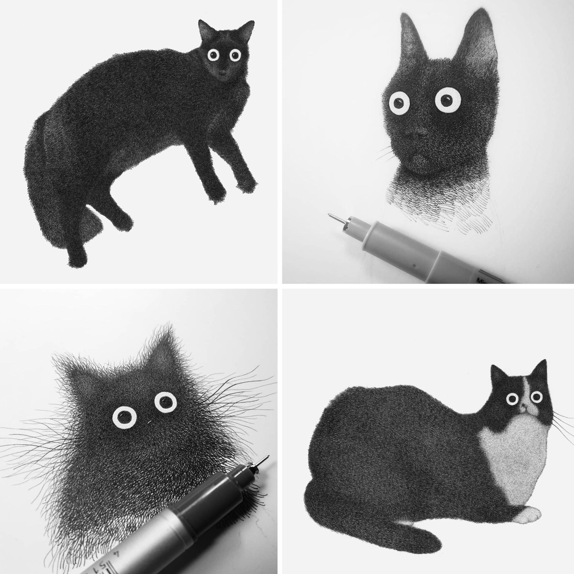 Иллюстратор Луис Коэльо  (6).jpg