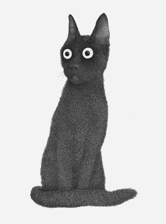 Иллюстратор Луис Коэльо  (9).jpg
