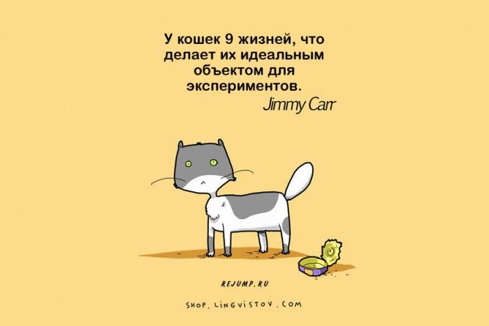 cat-doodles-2.jpg