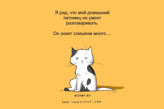 cat-doodles-4.jpg