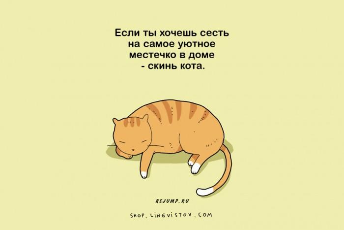 cat-doodles-5.jpg
