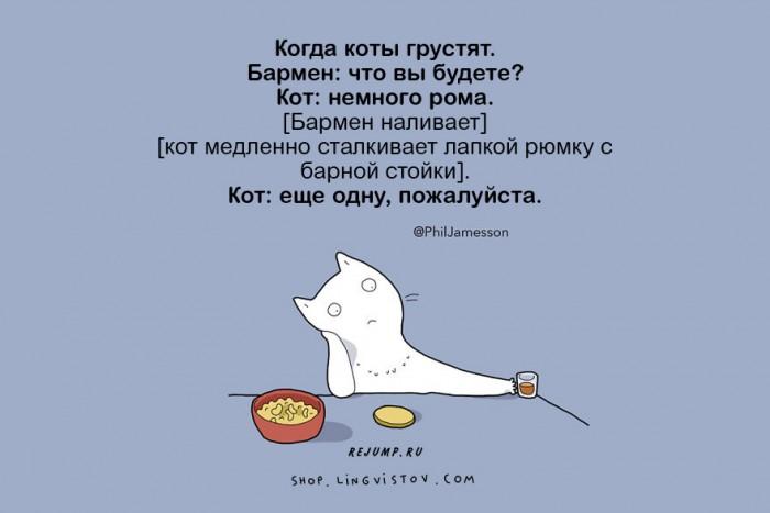 cat-doodles-6.jpg