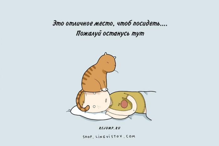 cat-doodles-8.jpg
