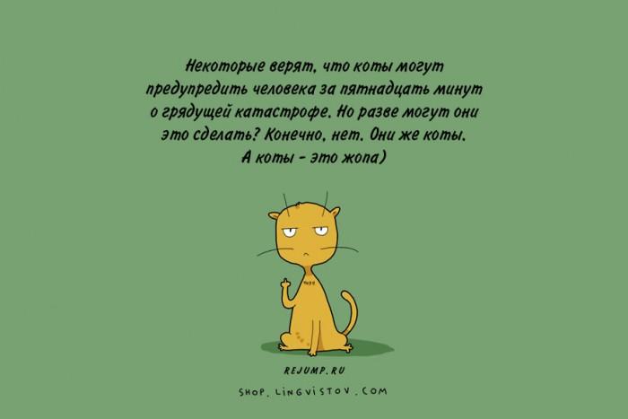 cat-doodles-15.jpg