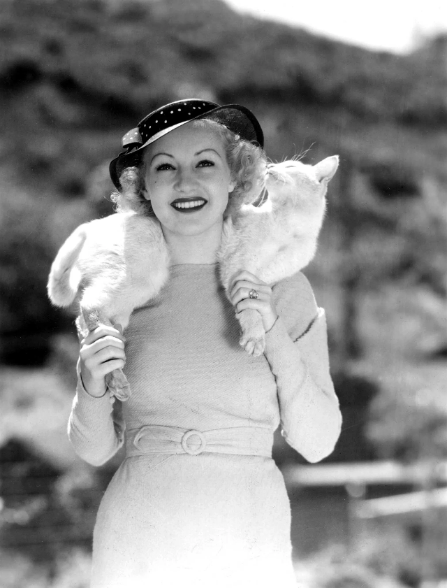 Betty Grable wearing her pet cat, 'Whitney,' around her neck like a fur scarf, 1935. The cat then sniffed her hair..png