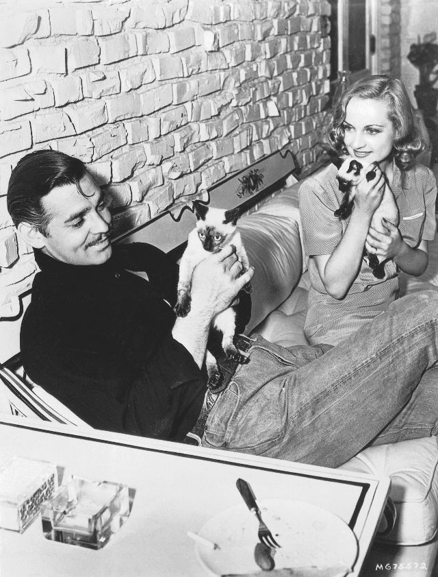 Clark Gable and Carole Lombard with two Siamese siblings at their home in the San Fernando Valley, 1940. Photo from John Kobal Foundation.jpg