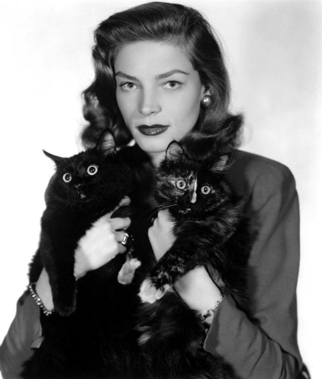Lauren Bacall poses with two wide-eyed cats, 1940s.jpg