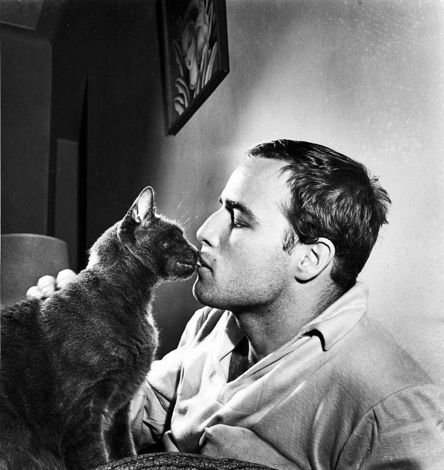 Marlon Brando kissing a cat at his home, 1950s.jpg