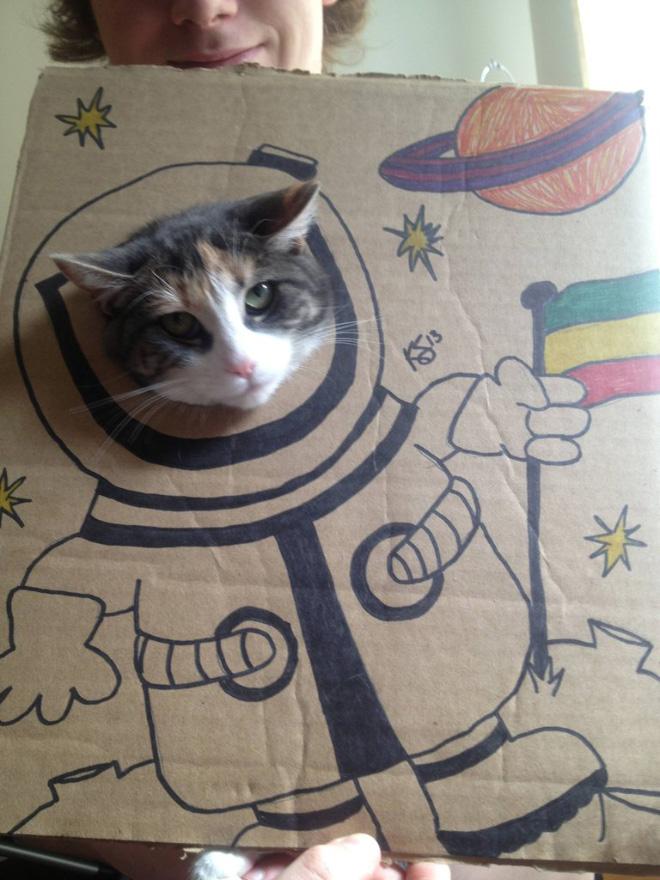cardboard-cat-art4.jpg