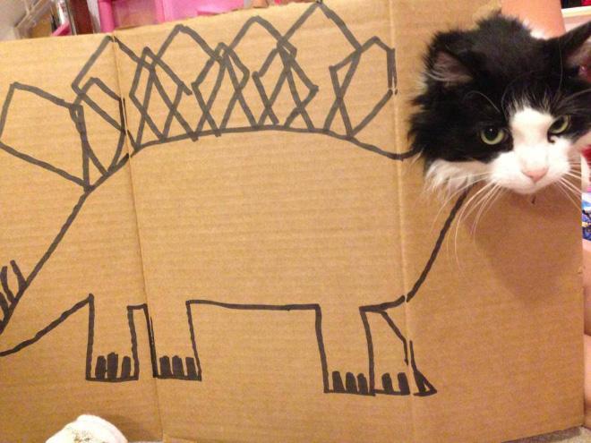 cardboard-cat-art9.jpg