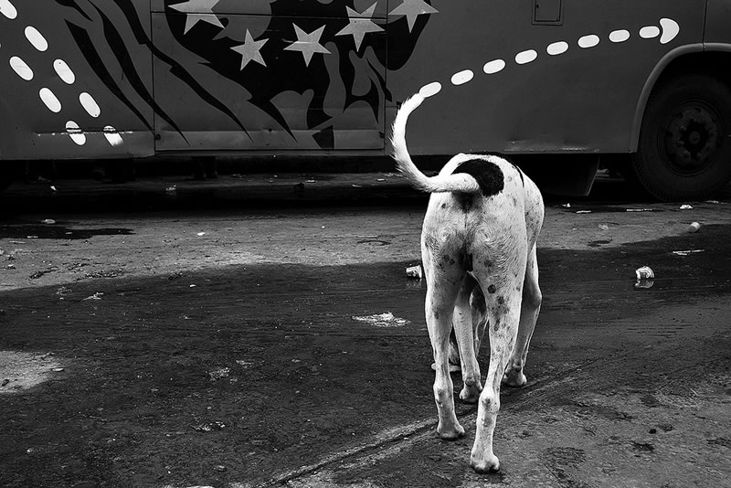 street_photography_art_of_composition_pt6_95.jpg