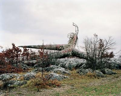 (Košute), 2007