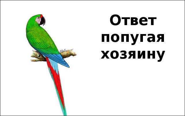 1366741621_samara