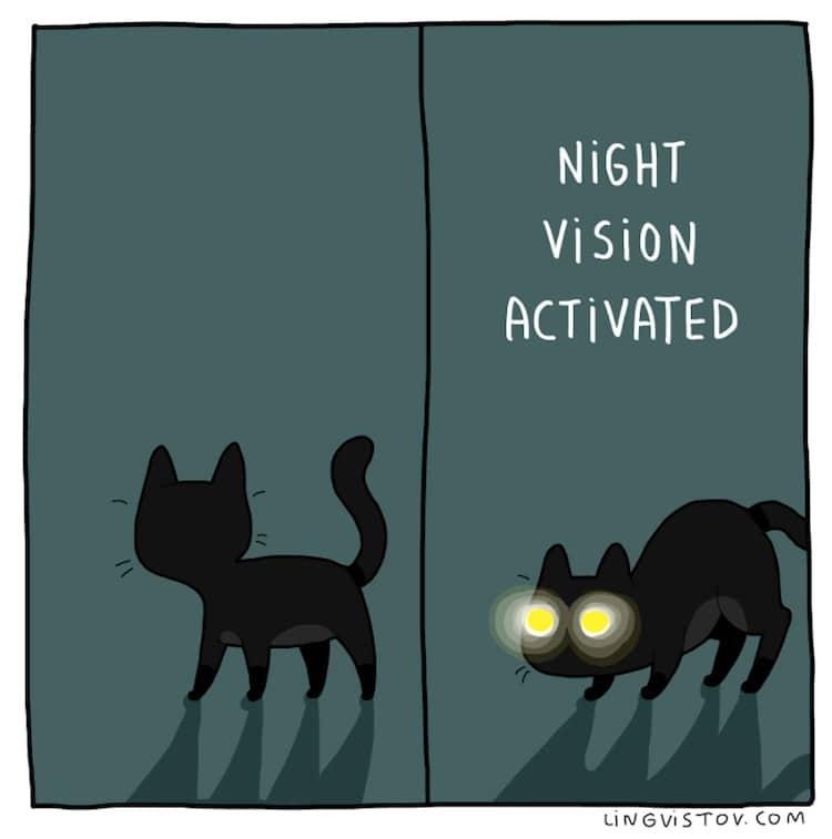 cat-comics-lingvistov-8.jpg
