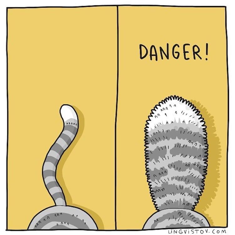 cat-comics-lingvistov-17.jpg
