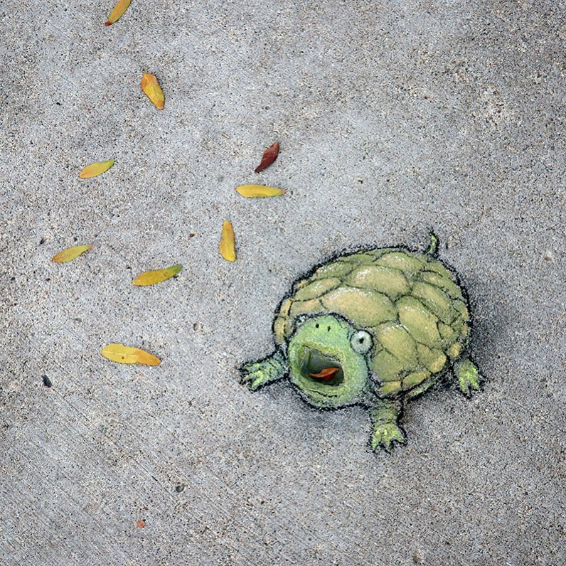 рисунки мелом уличного художника Дэвида Зинна (3).jpg