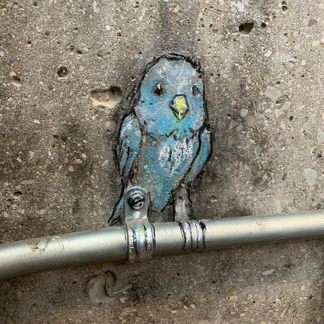 рисунки мелом уличного художника Дэвида Зинна (10).jpg
