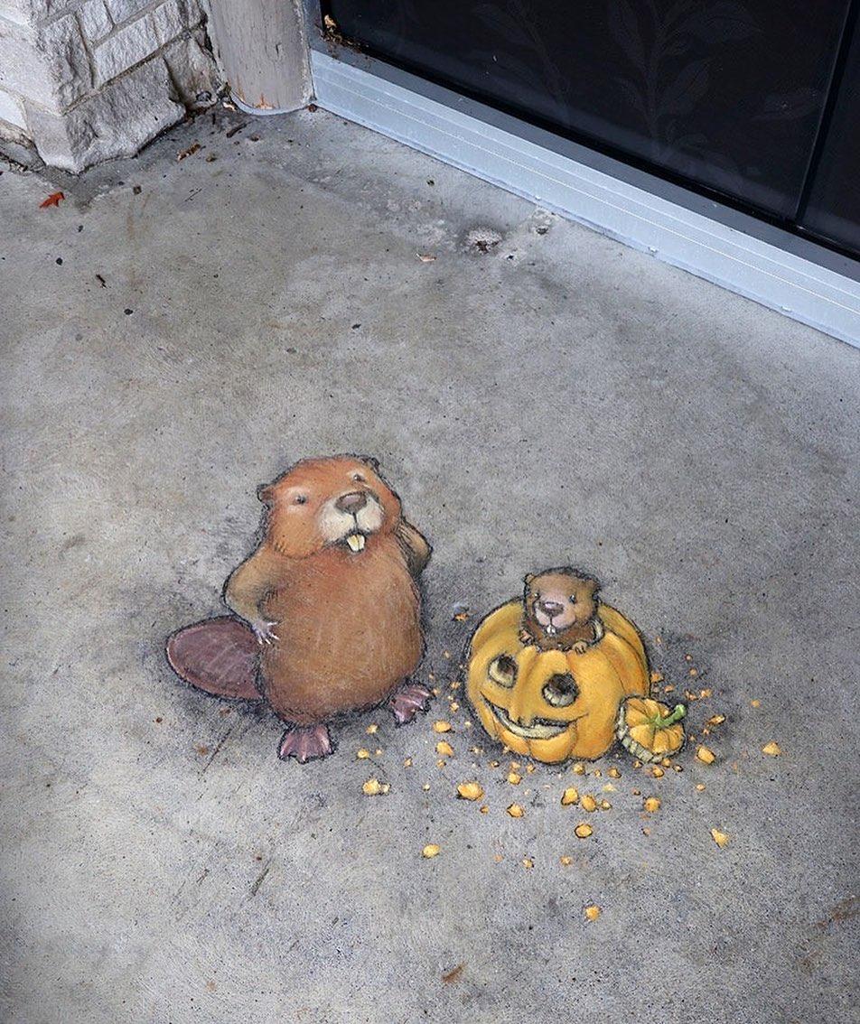 рисунки мелом уличного художника Дэвида Зинна (14).jpg