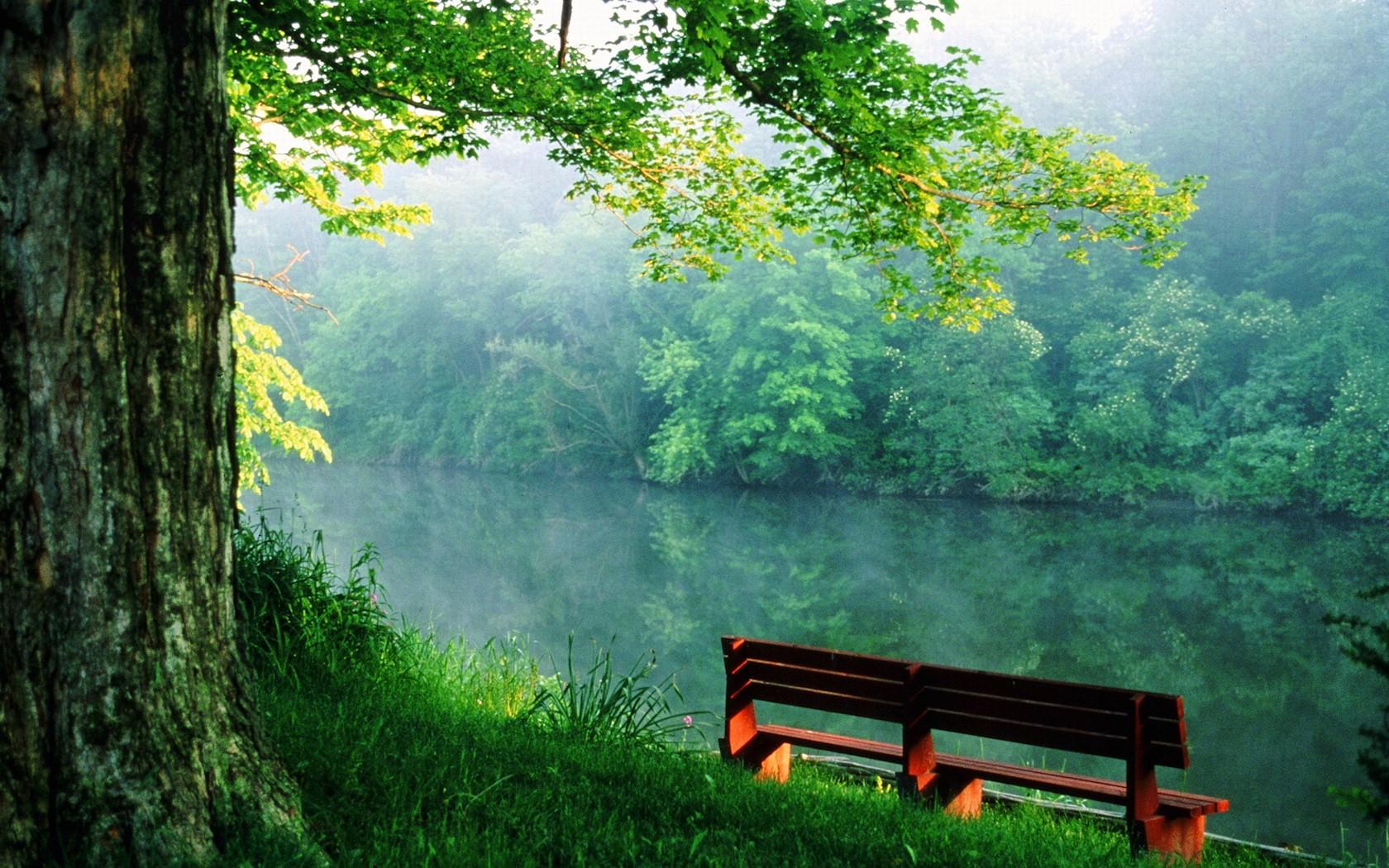 978_skamejka_reka_spokojstvie_1680x1050_(www.GdeFon.ru)