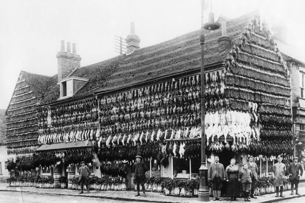 Victorian_era_butcher_shops_1.jpg