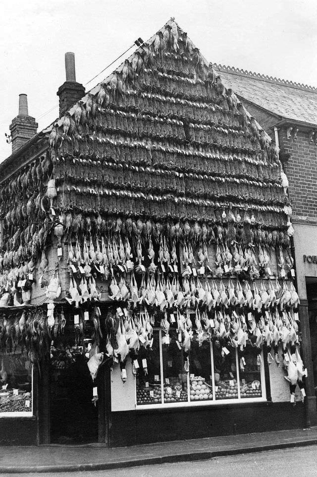 Victorian_era_butcher_shops_5.jpg