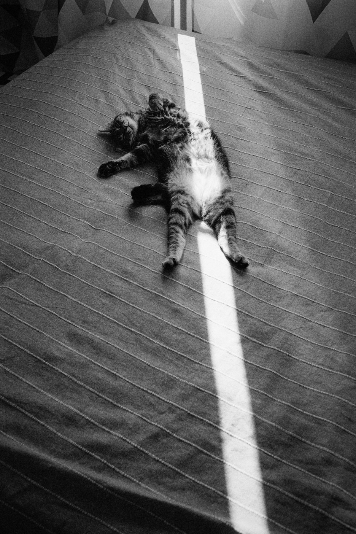 Фотограф Алексей Мякишев  (23).jpg