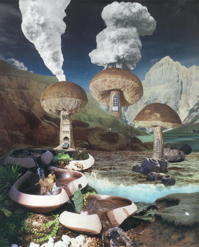 mushroom-chimney_-825x1024.jpg