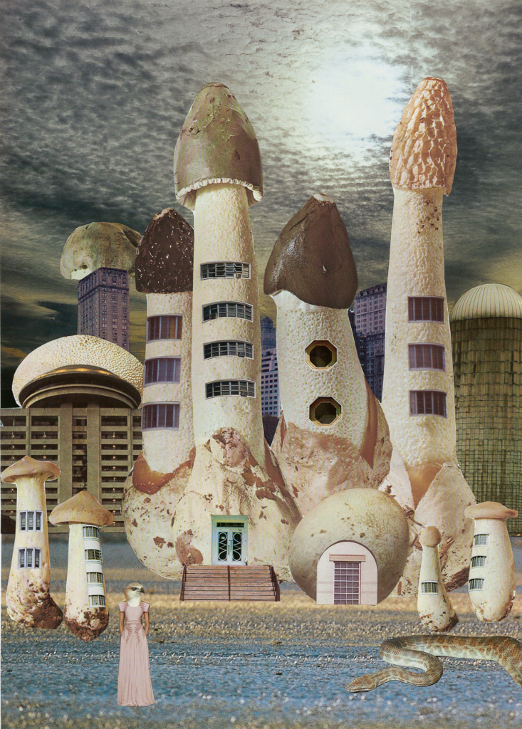 mushroom-city-733x1024.jpg