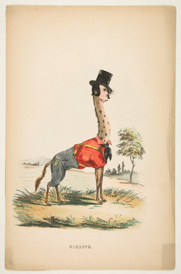 natural-history-of-the-human-race-giraffe-768x1157.jpg