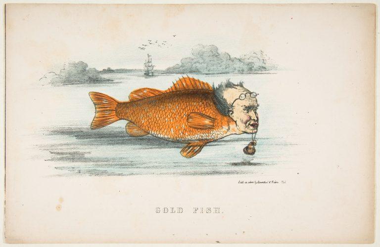 natural-history-of-the-human-race-goldfish-768x500.jpg