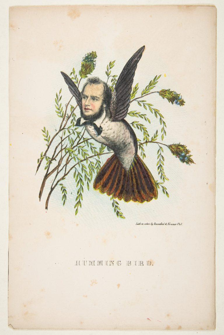 natural-history-of-the-human-race-humming-bird-768x1149.jpg