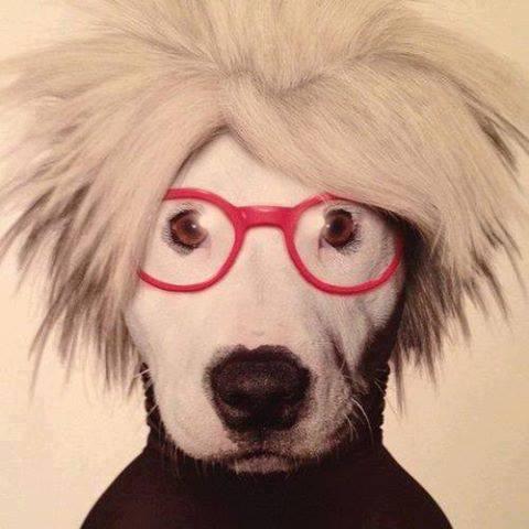 12-Andy Warhol.jpg