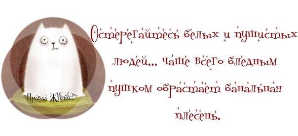 1373854934_frazki-2